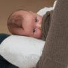 nurture nest2